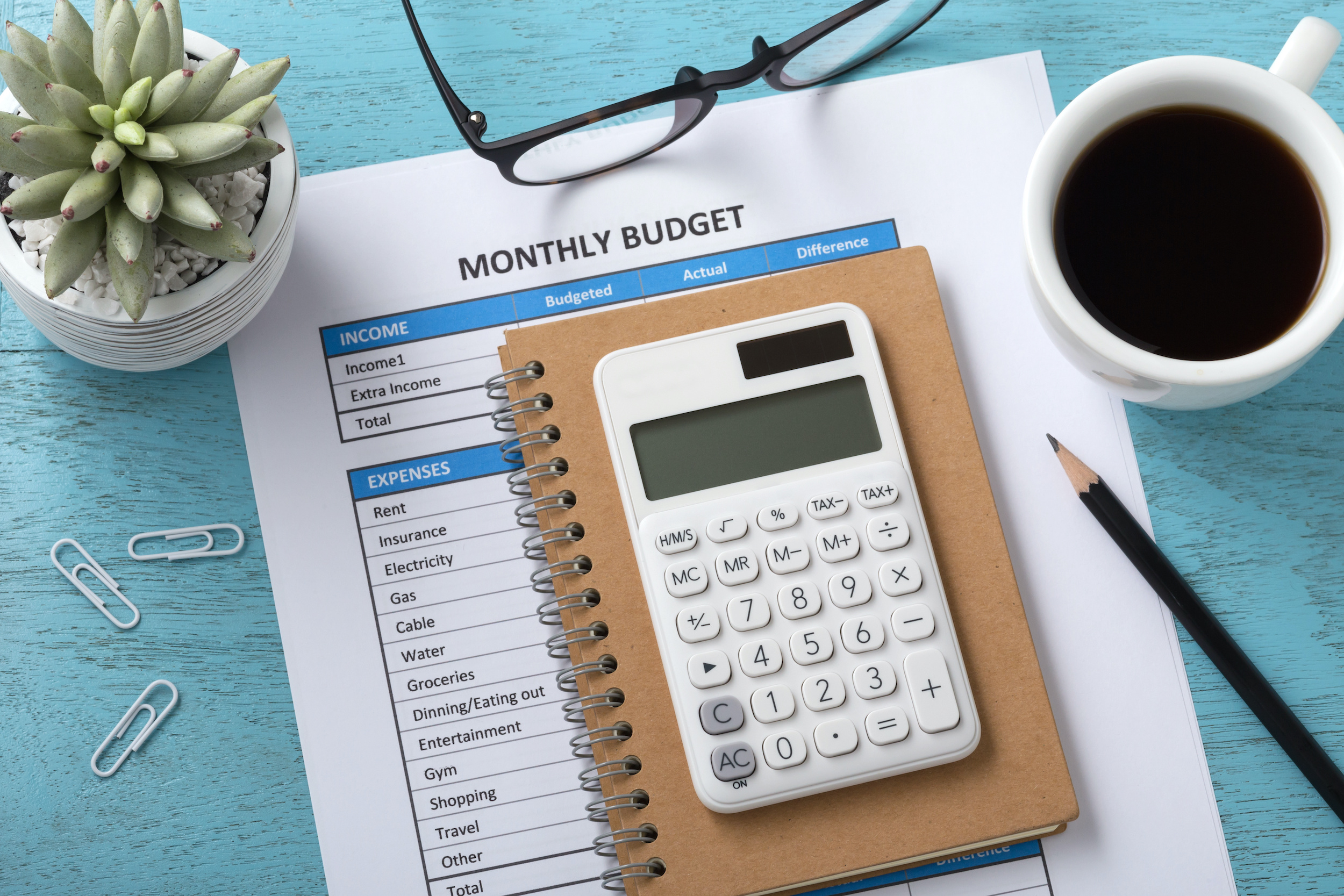 Monthly budget savings